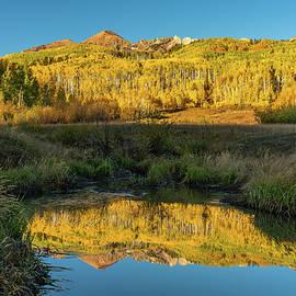 Autumn Aspen Reflection by Ron Long Ltd Photography