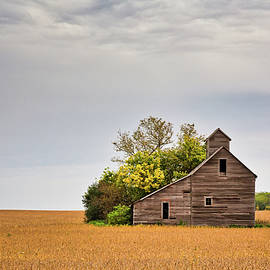 Autumn at Grandpa's Granary by Penny Meyers