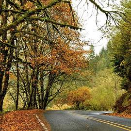 Autumn by Beautiful Oregon