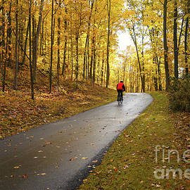Autumn Bike Ride by Jane Tomlin