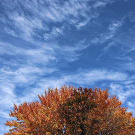 Autumn Blue Sky Wispy Clouds by Marlin and Laura Hum