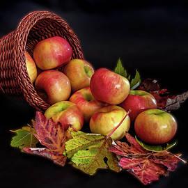 Autumn Bounty by Ira Marcus