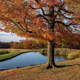 Autumn Charm by Dale Kincaid