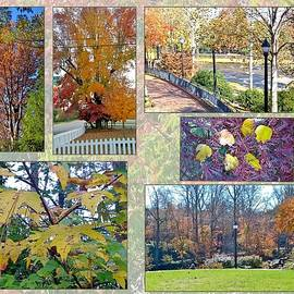 Autumn Collage by Gayle Miller