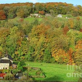 Autumn colour in Calderdale, Yorkshire. by David Birchall