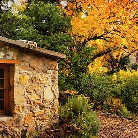 Autumn Cottage  by Saija Lehtonen