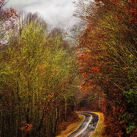 Autumn Curves in the Rain by Debra and Dave Vanderlaan