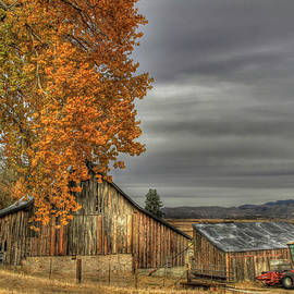 Autumn Day on the Farm by Donna Kennedy