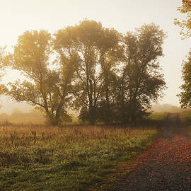 Autumn Dreams by Connor Sipe