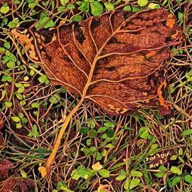 Autumn Fairy Ii by Nives Palmic