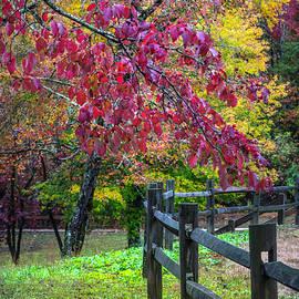Autumn Fences by Debra and Dave Vanderlaan