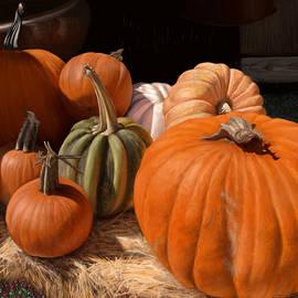 Autumn Harvest  by Susan Foster