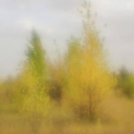 Autumn by Igor Baranov