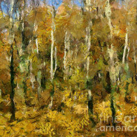 Autumn In A Beech Forest by Dragica Micki Fortuna