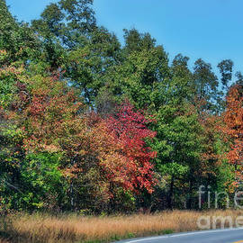 Autumn in Arkansa by Joan Bertucci