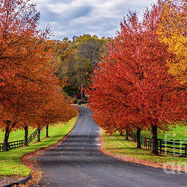 Autumn in Connecticut by New England Photography