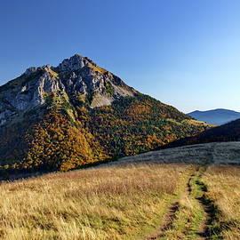 Autumn in fairy tale land by Ren Kuljovska