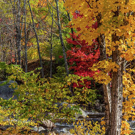 Autumn in Jackson New Hampshire by Michael Saunders