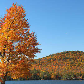 Autumn In Lake George by Living Color Photography Lorraine Lynch