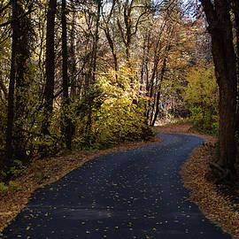 Autumn in Millcreek Canyon by Martin Paryz