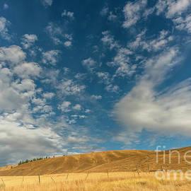 Autumn in the prairie by Viktor Birkus