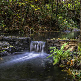 Autumn Is Calling by Mitch Shindelbower