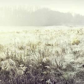 Autumn Landscape #17 by Slawek Aniol