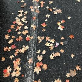 Autumn Leaves by Gail Schoolfield
