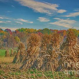 Autumn Morning Fog on Amish Haystacks by Janice Pariza