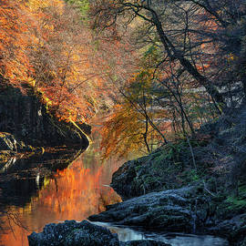Autumn on River Garry by Dave Bowman