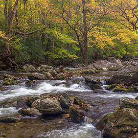 Autumn on the Little River by Eric Albright