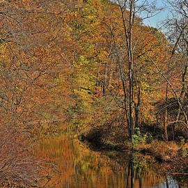 Autumn Orange Glow and Reflection by Allen Beatty