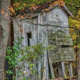 Autumn Outhouse by Janice Pariza