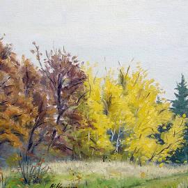 Autumn Overcast by Rick Hansen