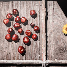 Autumn Panes by Jim Love