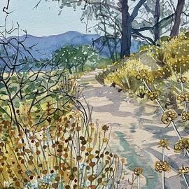 Autumn Path by Luisa Millicent