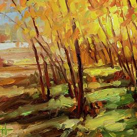 Autumn Pathway by Steve Henderson