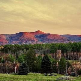 Autumn Peaks Of The White Mountains by Alida M Haslett