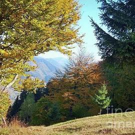 Autumn period by Julia Bernardes