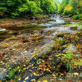 Autumn Rain Down by the Riverside by Thomas R Fletcher