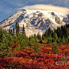 Autumn Rainbow Of Color At Paradise by Adam Jewell