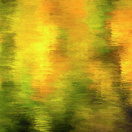 Autumn Reflection Abstract by Francis Sullivan
