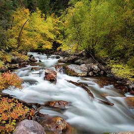 Autumn River by Darlene Smith