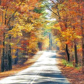Autumn Road by Rick Davis