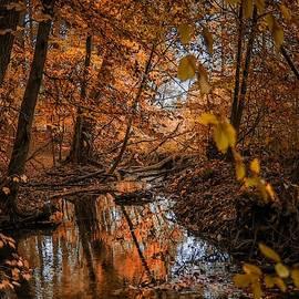 Autumn Scene Near Randsomhurst L A S by Gert J Rheeders