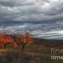 Autumn Sky by Flo Photography
