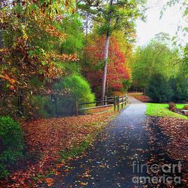 Autumn Stroll by Arnie Goldstein