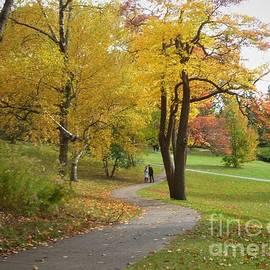 Autumn Stroll at High Park by Lingfai Leung