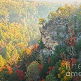 Autumn Sunrise at Fall Creek Falls by Floye Wolfe