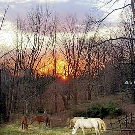 Autumn Sunrise by Patricia Keller